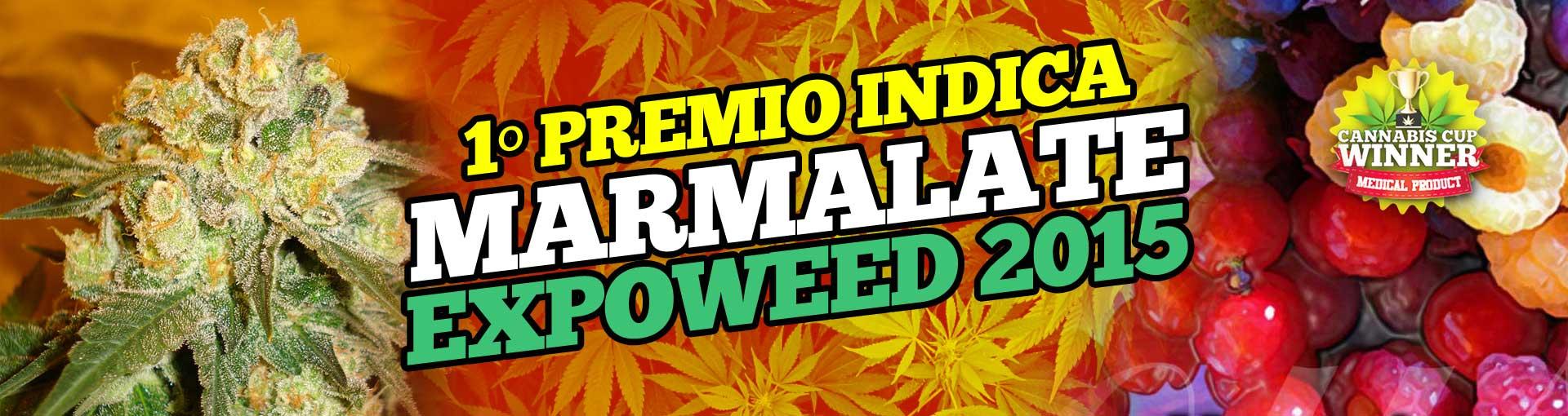 Marmalate Promo