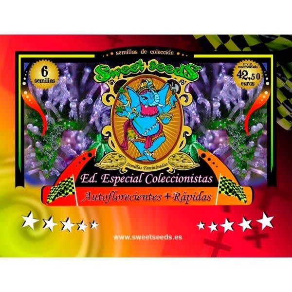 EDICION  AUTOFLORECIENTES + RAPIDAS - Sweet Seeds