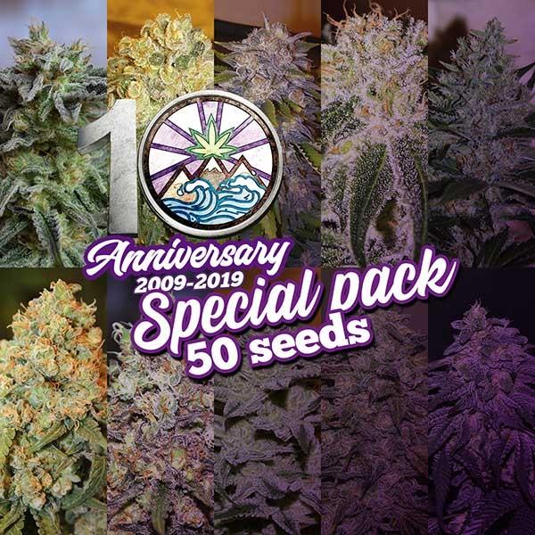 10th Anniversary Pack - 50 seeds - Hanfsamen - GOURMET SAMMLUNG