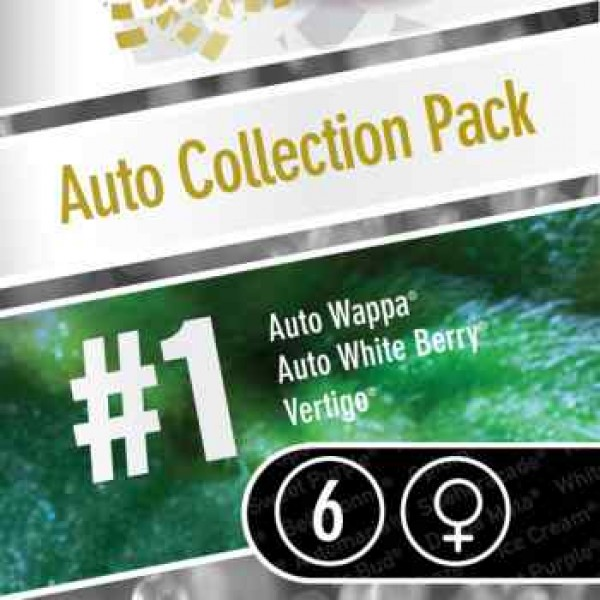 AUTO COLLECTION PACK #1  - Paradise Seeds