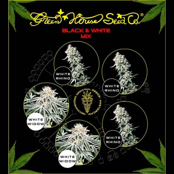 Black & White Mix  - Green House