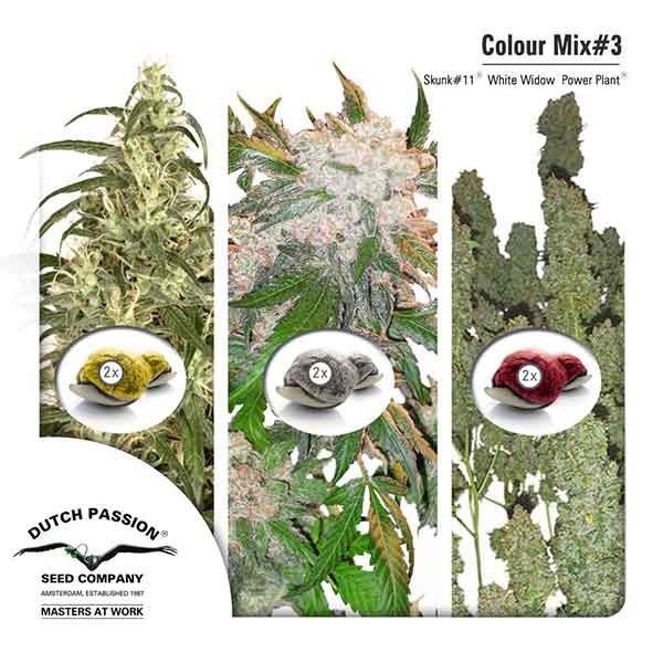 Colour Mix 3 -  -