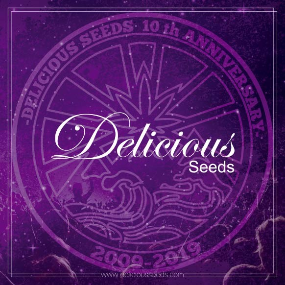 Catalog Delicious Seeds - Merchandising - Hanfsamen