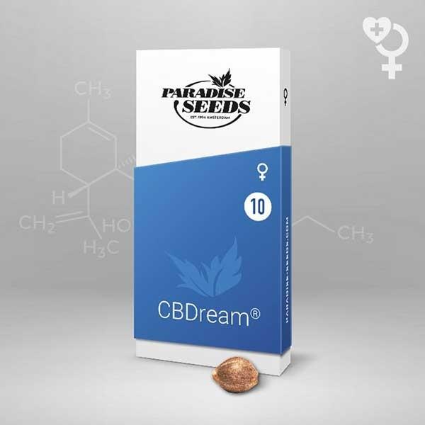 CBDream - Paradise Seeds