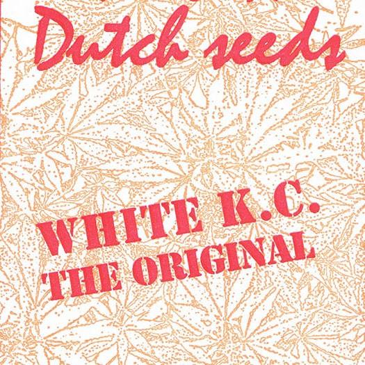 White K.C. - 5 seeds - KC Brains