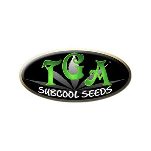 Jacked-UP - 5 seeds - TGA Subcool