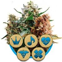 Kauf Medical Mix
