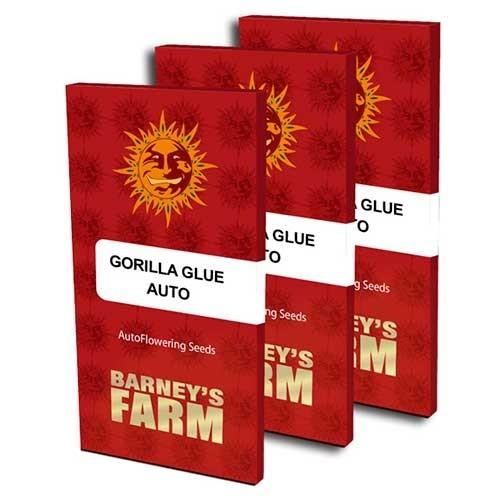GORILLA GLUE AUTO - Barney's Farm