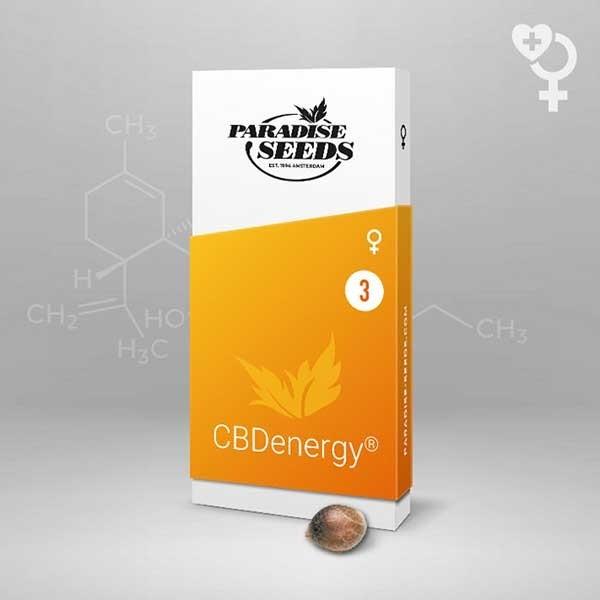 CBDenergy - Paradise Seeds
