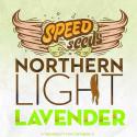 NORTHERN LIGHT X LAVENDER