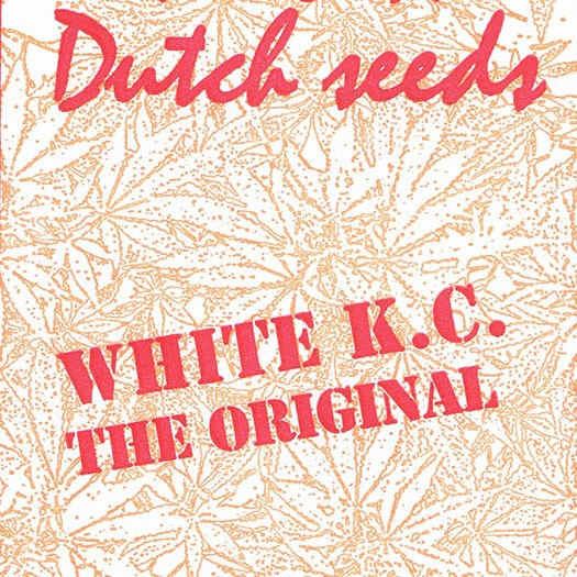 White K.C. - 5 seeds - KC Brains