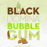Purchase BLACK DOMINA X BUBBLE GUM