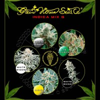 Purchase Indica Mix G