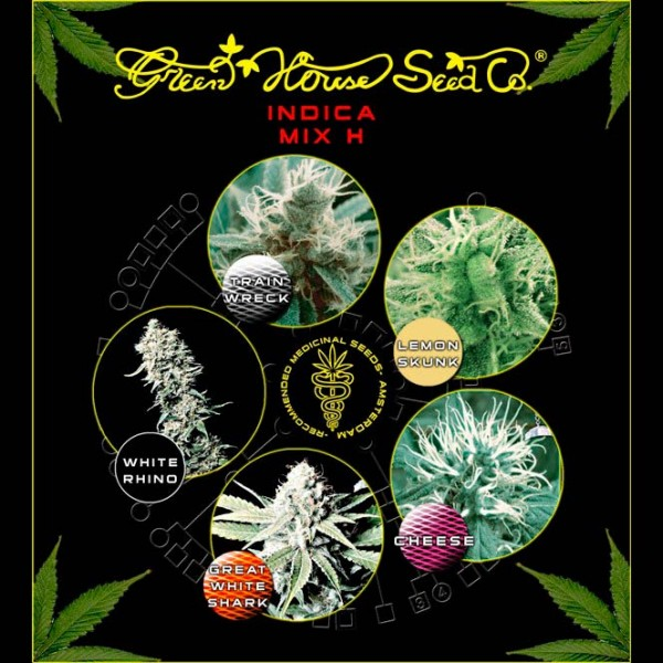 Indica Mix H - Green House