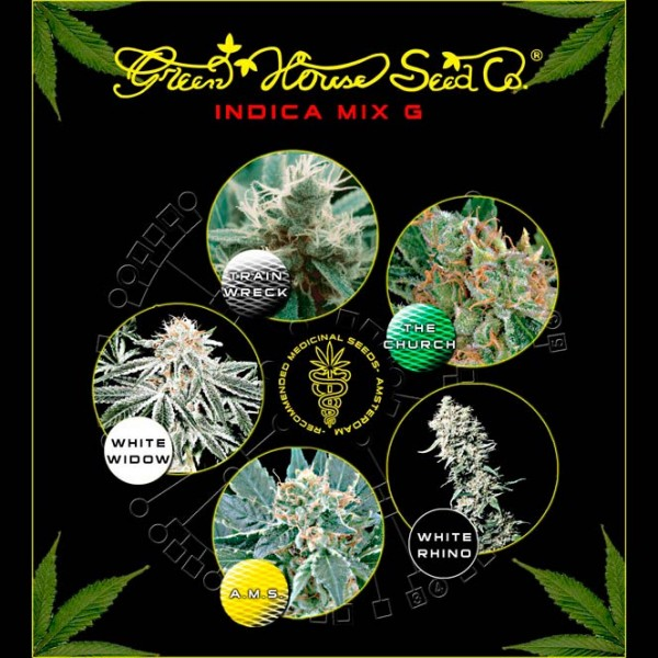 Indica Mix G - Green House