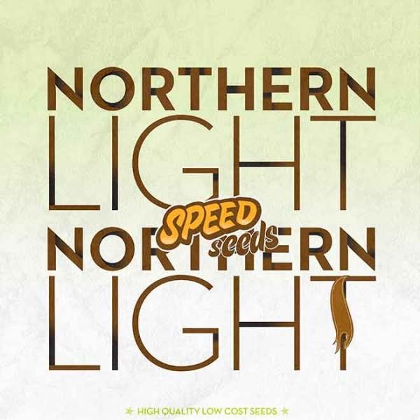 NORTHERN LIGHT X NORTHERN LIGHT - Speed Seeds