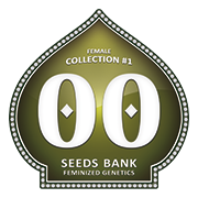 Female Collection - 00 Seeds