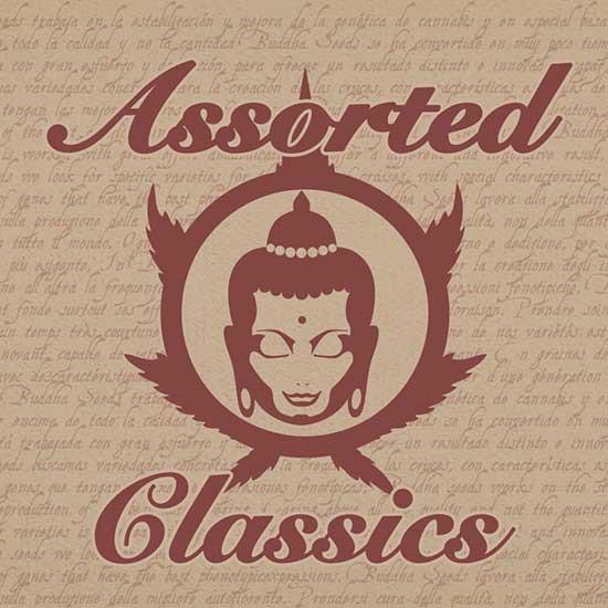ASSORTED CLASSICS - Buddha Seeds