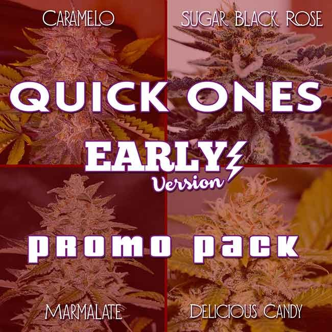 QUICK ONES PROMO PACK - EARLY VERSION - Graines