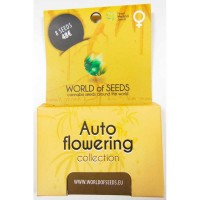 Achat Autoflowering Collection - 8 seeds