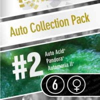 Achat Auto Collection pack #2