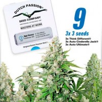Achat High Potency Autoflower Mix