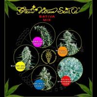 Achat Sativa Mix