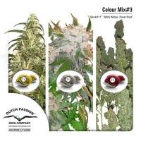 Achat Colour Mix 3