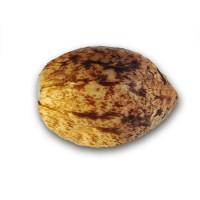 Achat Marmalate Regular