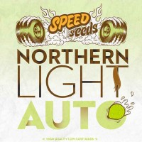 Achat NORTHERN LIGHT AUTO