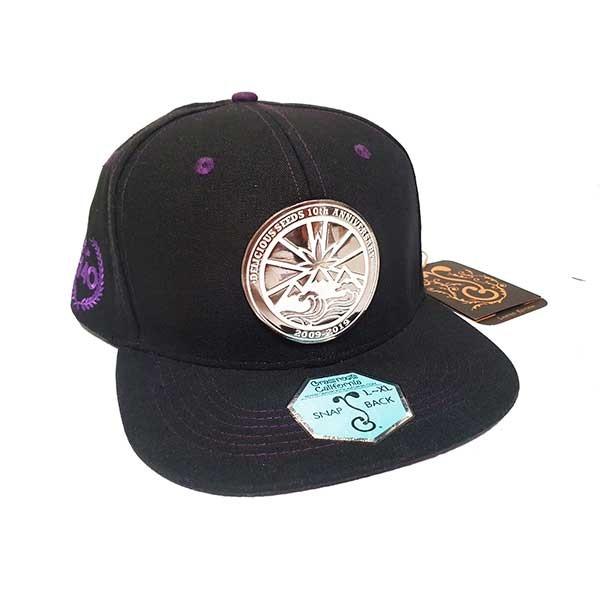 Delicious 10th Anniversary Hat -  -