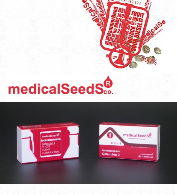 Collection #2 6 semillas - Medical Seeds