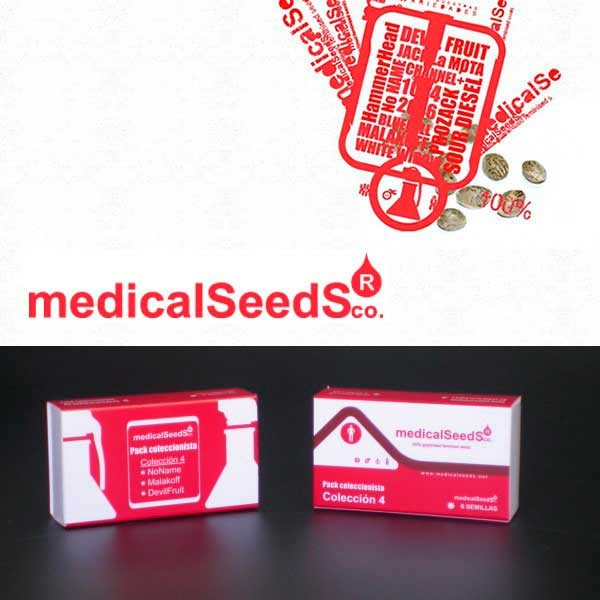 Collection #1 6 semillas - Medical Seeds