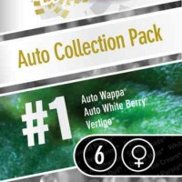 Comprar AUTO COLLECTION PACK #1