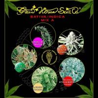 Comprar Sativa / Indica Mix A