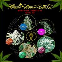 Comprar Sativa / Indica Mix D