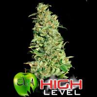 Comprar HIGH LEVEL