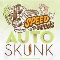 Comprar SKUNK AUTO (SPEED SEEDS)