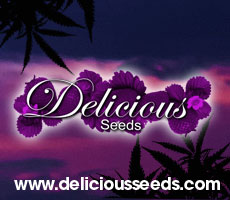 Banner Delicious