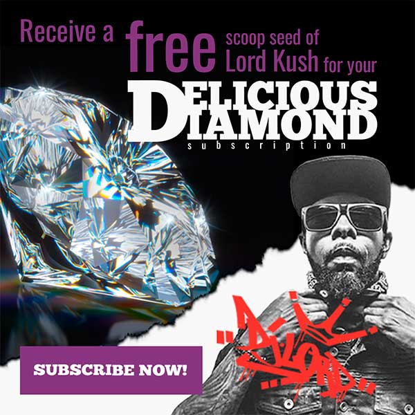 Lord Kush x Diamond Subscription
