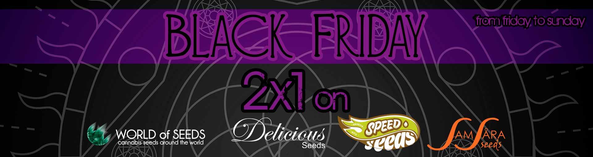 BLACK FRIDAY - 2x1