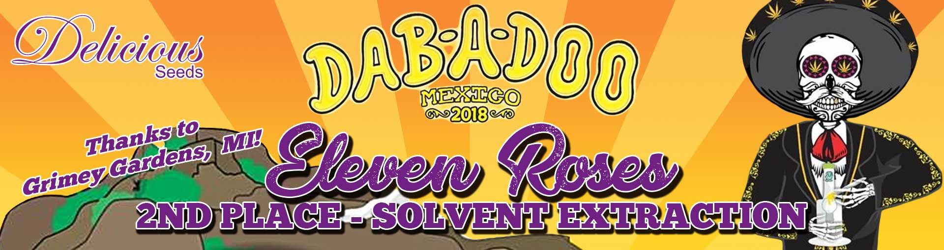 ELEVEN ROSES DABADOO