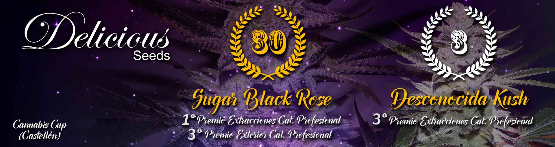 Sugar Black Rose 30th Awards